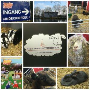 KiBo Schagen kinderboerderij